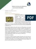 UNIVERSIDAD NACIONAL DE CHIMBORAZO cuencas quishuar.docx