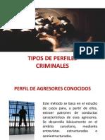 TIPOS DE PERFILES CRIMINALES.pptx