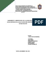 proyecto bicentenario.docx