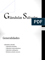 GLANDULAS SALIVALES.pptx