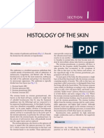 The Skin.pdf