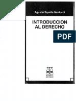 SQUELLA NARDUCCI, AGUSTIN Introd. al Dº (pág. 157-175).pdf