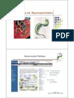 genoma de tripanosomatidos.pdf