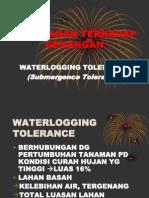 Bab IV. PTTLR_Cekaman Genangan.pdf