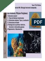 ina2008-t02 (1) ppt poriferos.pdf