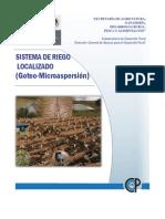 RP_SAGARPA_Sistema Riego Localizado.pdf