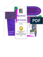 LEAFLED PENKES LANSIA.docx