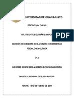 Informe mecanismos de adicción.docx