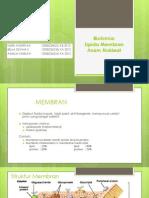 membran_dan_asam_nukleat[1]