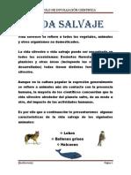VIDA SALVAJE.docx