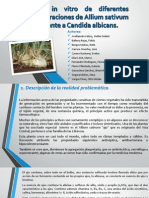 EXPOSICIÓN PROYECTO.pdf