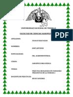 AGROPECUARIA 2.docx
