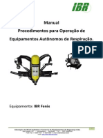 IBR - Fenix.pdf