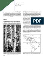 Rhizophoramangle.pdf
