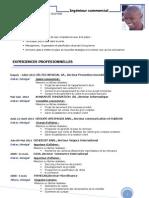 E-CV.Samba.Dione.pdf