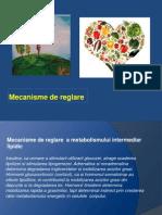 220025106 Metabolism Mecanisme Curiozitati