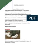 Razas de gallinas ponedoras de huevos tecnologia.docx