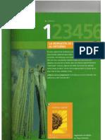 TEMA 2 LA RESPUESTA DE LAS PLANTAS AL ENTORNO.pdf