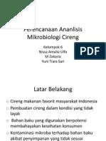 Perencanaan Ananlisis Mikrobiologi Cireng