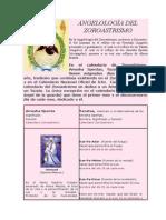 ANGELOLOGÍA DEL ZOROASTRISMO.doc