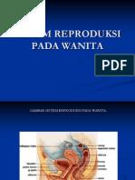 Persentase Sistem Reproduksi Pada Wanita2