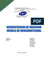 SEGMENTACIÓN DE MERCADO.docx