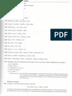 Cálculos Equações Químicas.pdf