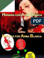 HOM. ARMAS BLANCAS.pptx