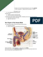 Untitled document - Google Docs.pdf