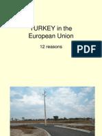 TURKEY_IN_EU[1]