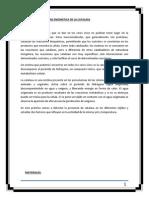 Informe 04 - Estudiode la Actividad de la Catalasa.docx