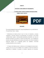 EL DEBIDO PROCESO COMO DERECHO FUNDAMENTAL.doc
