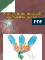 00 Presentación Seminario plantas medicinales ISP 2011.pdf