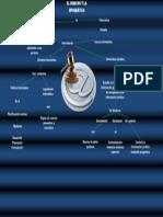mapa conceptual derecho informatico.docx