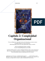 2. Complejidad organizacional.pdf