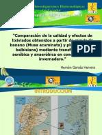 PRESENTACION TESIS HERNAN GARCES 27FEBRERO2010.pptx