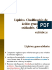 5. grasas-AG-beta oxidacion-cuerpos cetónicos.pdf