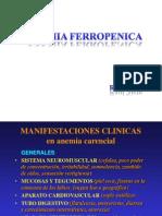 A.ferropenica.ppt