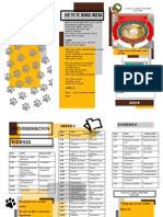 CAMINATA (1).pdf