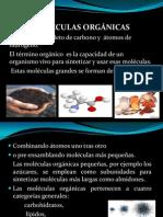 CLASE_2_moleculas_biologicas.pptx