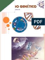 codigogenetico-110301200742-phpapp01.ppt
