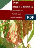 ponencia-problematica-yesca.pdf