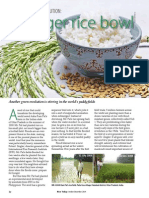 Rice Today Vol. 13, No. 4 The new green revolution