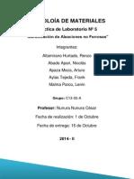 informeNº5 (1) (2).docx