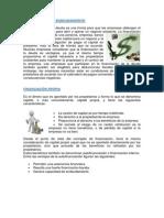 FINANCIACIÓN POR ENDEUDAMIENTO.docx