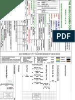 HumapaAtg289_PT_S_R_Registro_continuo_de_hidrocarburos_110512.pdf