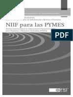 Estados Financieros Ilustrativos y Lista de Comprobaciones de Información a Revelar y Presentar.pdf