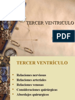 ANATOMIA III VENTRICULO.ppt