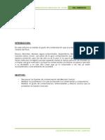 CONTAMINACION MERC. MODELO.docx