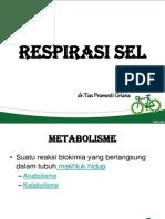 Respirasi seluler